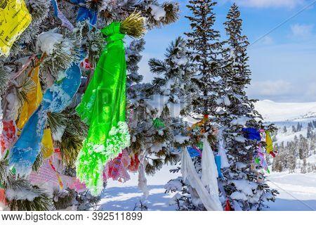 Ergaki, Krasnoyarsk Krai, Russia - March 25, 2020: Bright Buddhist Prayer Flags On Snow Covered Ceda