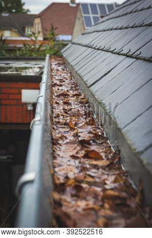 A Portrait Of A Clogged Gutter Full Of Autumn Leaves And Water Which Cannot Get Away Hanging Next To