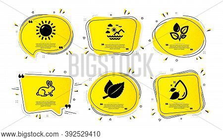Sunny Weather, Sea Mountains And Mint Leaves Icons Simple Set. Yellow Speech Bubbles With Dotwork Ef