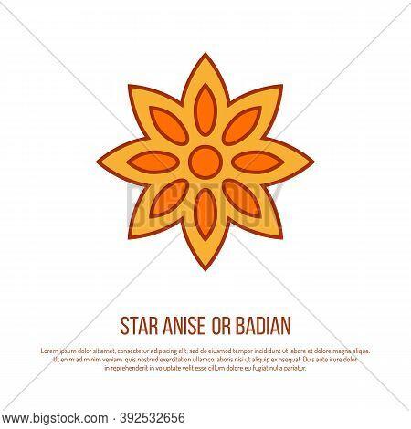 Kitchen Herb Star Anise Icon On White Background, Vector Illustration