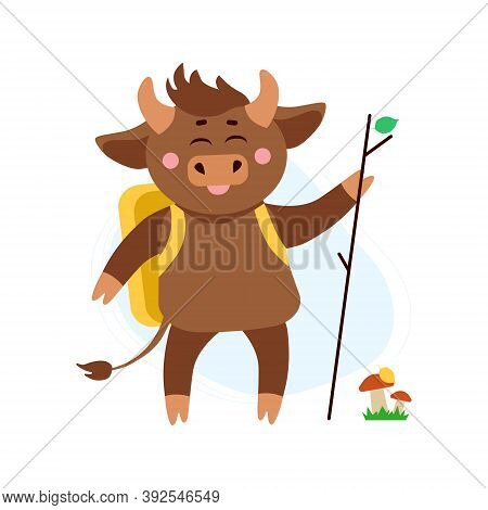Vector Illustration Of Cow, Ox Or Bull Hiking With Back Pack Around Mushrooms And Grass In Forest. Y