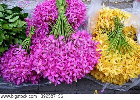 In Selective Focus Purple Yellow  A Branches Of Thai Orchid Selling On  A Floor At The Flower Market