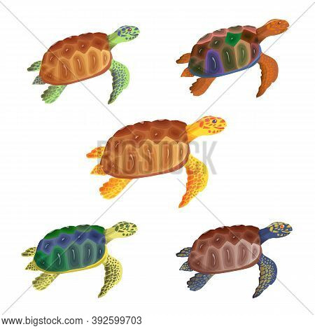 Cartoon Turtle. Multicolored Little Turtles, Modern Colors. Vector Set. A Collection Of Cute Friendl