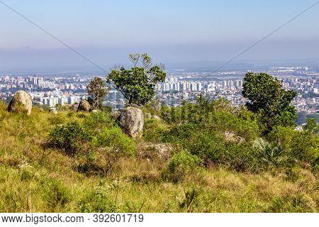 Vegetation And Porto Alegre Cityview From Morro Santana