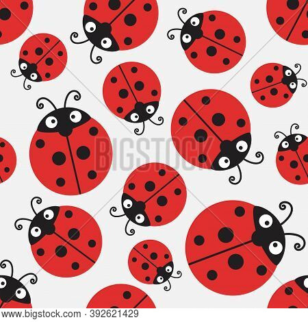 Ladybug Pattern, Vector Seamless Ladybird Decorative Background With Funny Insects On White Backgrou