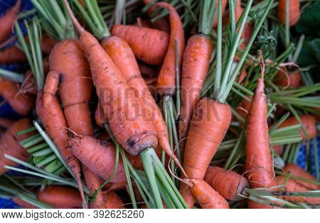 Group Of Fresh Baby Carrots Display For Sell In The Market.