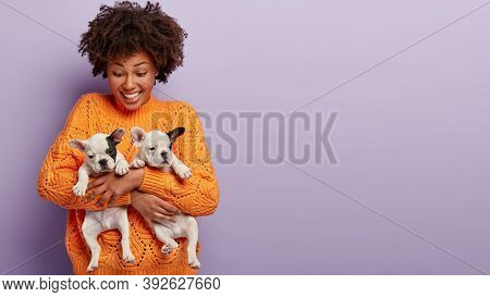 Good Humoured Optimistic Dark Skinned Lady Carries Closely Two Pedigree Puppies, Finds New Host Or H