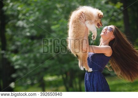 Beautiful Woman In A Summer Park With Her Pet, Collie Puppy, Outdoors On A Sunny Day. Smiling Young