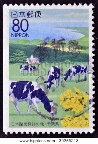 JAPAN - CIRCA 1997: Een stempel gedrukt in Japan toont een Japan kustlandschap met grazende koeien cir