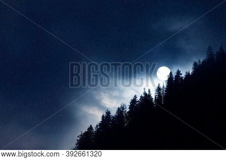 Winter night scene. Dark night forest, big moon and snow. Waiting for a Christmas miracle.