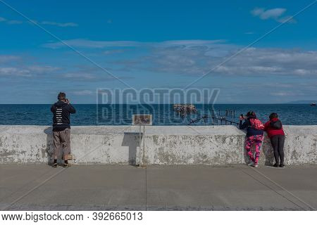 Punta Arenas, Chile-february 10, 2020: Tourists Take Photos Of The Cormorants On An Old Pier In Punt