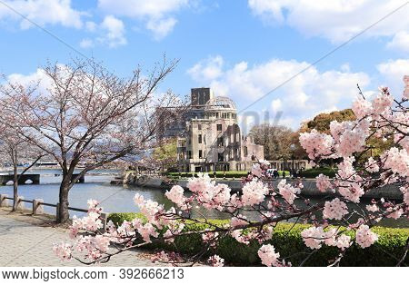 Cherry blossoming season in Japan. Blooming sakura trees near to Atomic Bomb Dome (Genbaku Dome Mae), Hiroshima Peace Memorial, Japan. Ruins of a building after an atomic bomb explode
