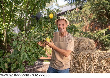 Smiling Man In Straw Hat Juggling Lemons