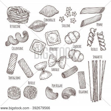 Sketch Pasta. Hand Drawn Italian Menu, Authentic Restaurant Food Types. Isolated Sketch Penne Fusill