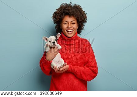 Stunning Lovable Girl Carries Little French Bulldog Puppy, Expresses Love To Pet, Smiles Broadly, We