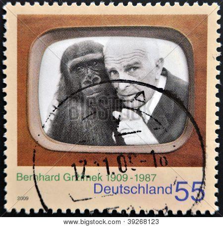 GERMANY - CIRCA 2009: A stamp printed in Germany shows Bernhard Grzimek circa 2009