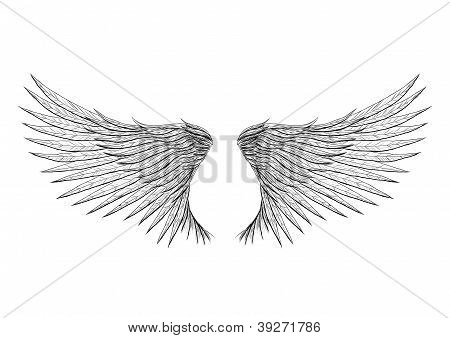 Tattoo wings isolated