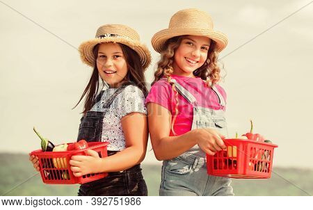 Organic Vegetables. Girls Cute Children In Hats Farming. Kids Gathering Vegetables In Basket. Villag
