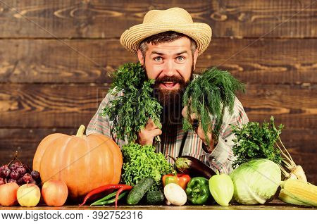 Excellent Quality Vegetables. Man With Beard Proud Of His Harvest Vegetables Wooden Background. Farm