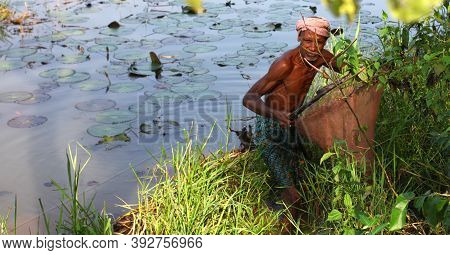 Nayagram, West Bengal, India- October 26, 2020: Fisherman In Action. An Indian Fisherman Using Nets