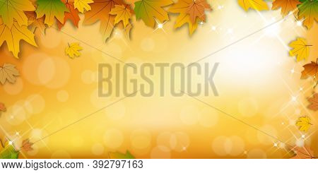 Autumn Background With Bokeh Effect,maple Leaves In Orange And Red Leaves On Blurry Bokeh Background