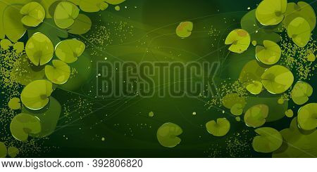 Swamp Or Lake Top View With Nenuphars Or Water Lily Pads. Natural Background With Deep Marsh And Lot