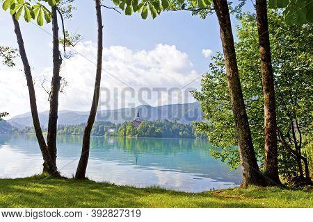 Bled Island (slovenian: Blejski Otok) On Bled Lake In Slovenia. View To The Pilgrimae Church Of The