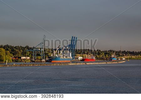Three Ships Under Loading At The Surrey City River Port On The Fraser River On A Sunny Day
