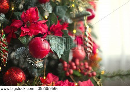 Red Decor On A Christmas Tree Made Of Apples And Poinsettias. Christmas Background And Frame For New