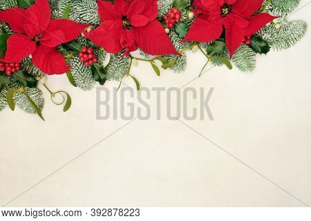 Poinsettia flower border for Thanksgiving & Christmas with holly, snow covered spruce fir, mistletoe & pine cones on parchment paper background. Festive composition. Flat lay, top view, copy space.