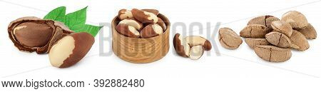 Brasil Nuts In Nutshell Isolated On White Background With Clipping Path And Full Depth Of Field. Set