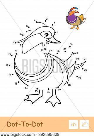 Colorless Vector Contour Dot-to-dot Illustration With A Mandarin Duck. Wild Birds Preschool Kids Col