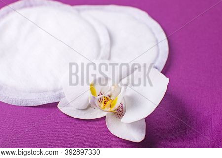 Cotton Breast Pads On The Violet Background. Disposable Nursing Pad.