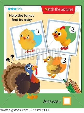 Matching Game, Education Game For Children. Puzzle For Kids. Match The Right Object. Help The Turkey