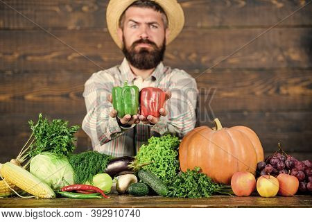 Sell Vegetables. Farmer Straw Hat With Fresh Harvest. Homegrown Harvest Concept. Typical Farmer Guy.