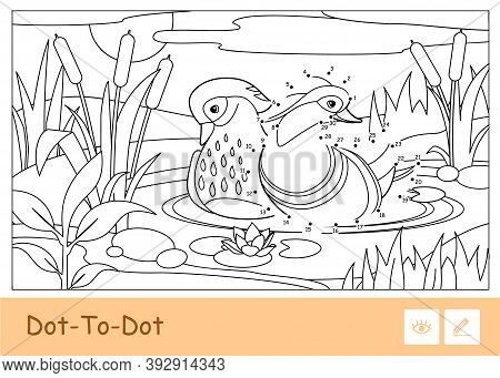 Colorless Vector Contour Dot-to-dot Illustration With A Mandarin Ducks Floating On A Forest River Ne