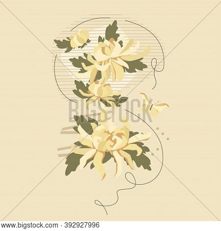 White Chrysanthemums Bouquet And Abstract Composition With Butterfly. Vector Floral Tender Design Fo