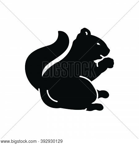 Black Solid Icon For Squirrel Chipmunk Tail Skunk Domestic Fauna Forest Herbivorous Wild Nature Anim