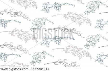 Vector Seamless Pattern With Christmas Floral Elements, Plants, Branches.