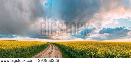 Elevated View Dramatic Sky With Fluffy Clouds On Horizon Above Rural Landscape Blooming Canola Colza