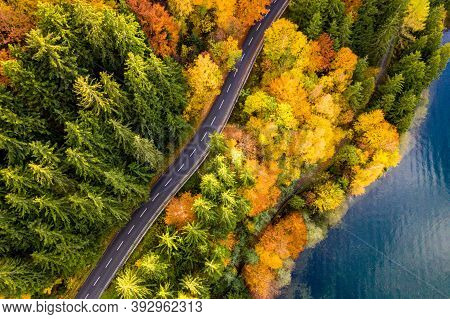 Aerial View Of Thick Forest And Lake In Autumn. Lonely Road With No Cars Cutting Through The Scene.