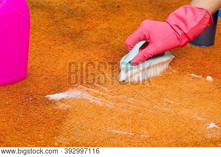 Woman Hand Cleaning Stain On Carpet With Hard Brush. Orange Carpet Cleaning. Carpet Cleaning Service