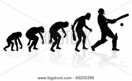 Evolution Of The Cricket Player
