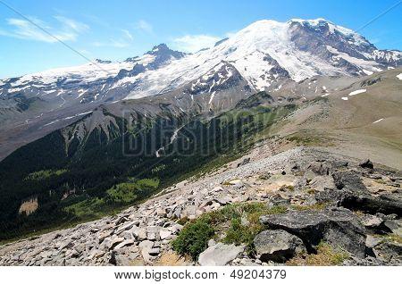 Mount Rainier Landscape
