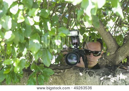 Closeup of a paparazzi photographer hiding behind tree