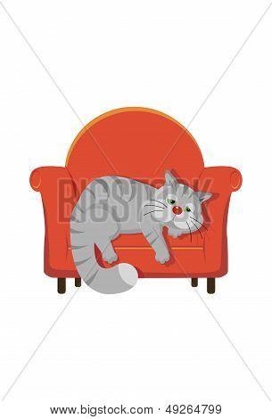 Grey Tabby Cat Lying On A Chair