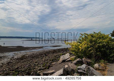 Ambleside Beach - Ships On Horizon