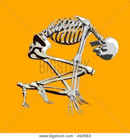 Bone 142