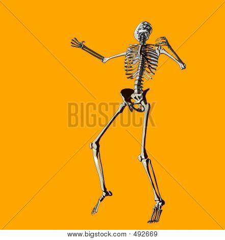 Bone 144