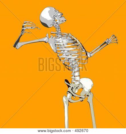Bone 145